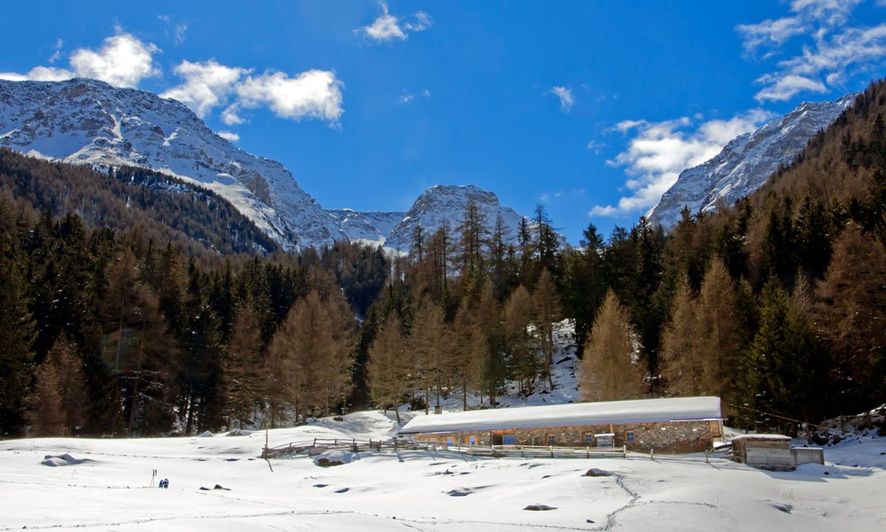 Rent a mountain lodge during the winter and enjoy a holiday on the Kleinalm