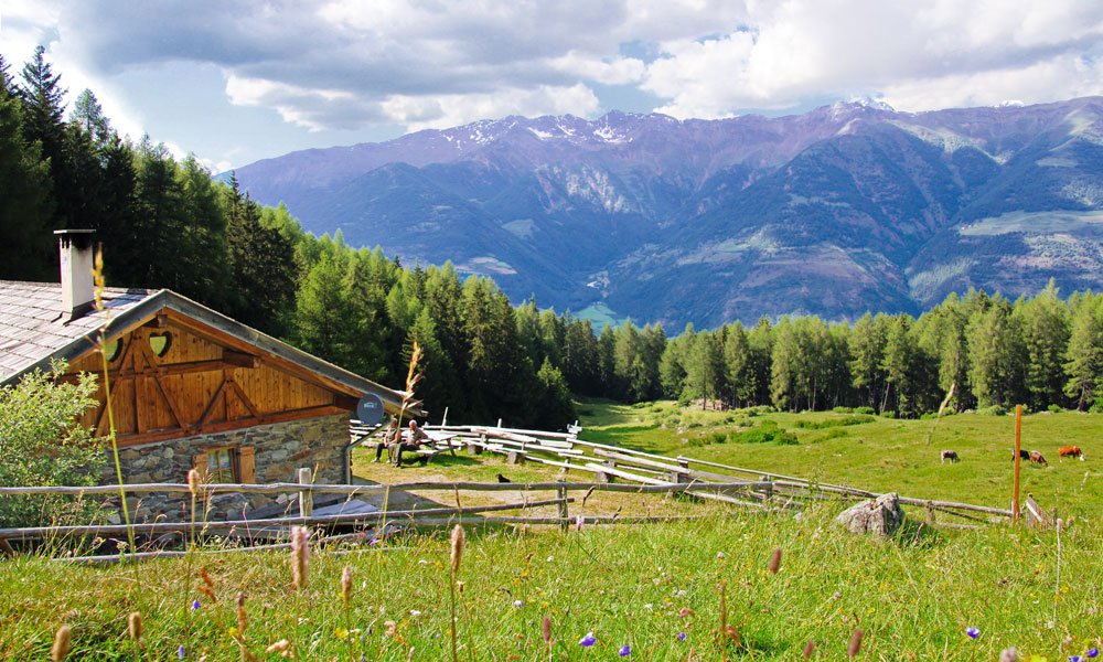 "The mountain hut ""Kleinalm"" – Holidays in a high alpine region"