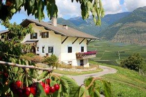Wieshof in Silandro / Val Venosta 11