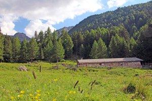 """Il rifugio """"Kleinalm"""" – Vacanze in una regione di alta montagna 4"""