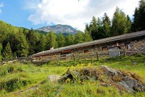 """Il rifugio """"Kleinalm"""" – Vacanze in una regione di alta montagna 3"""