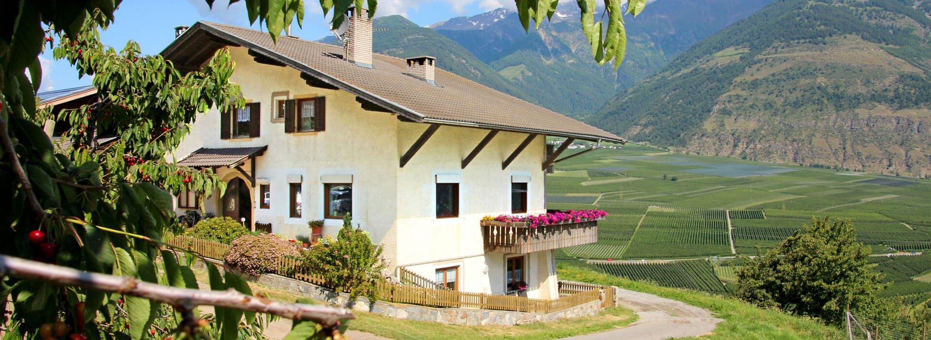 wieshof-schlanders-vinschgau-01